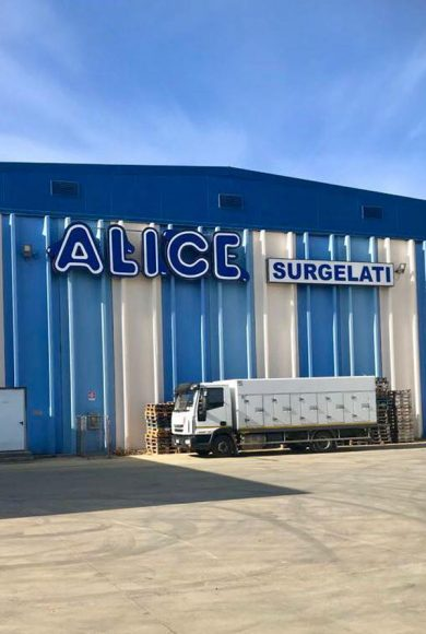 AliceSurgelati1